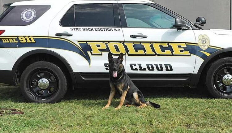 Police-Dog2.jpg
