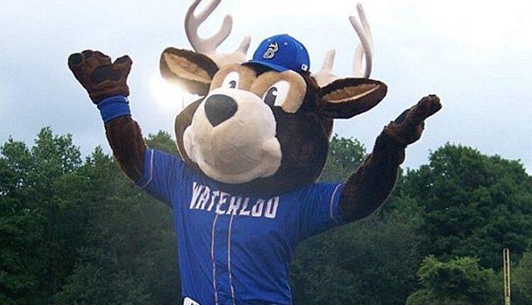 Waterloo-Bucks-Mascot.jpg
