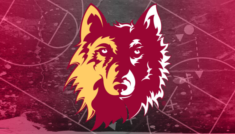 Northern-State-Wolves.jpg