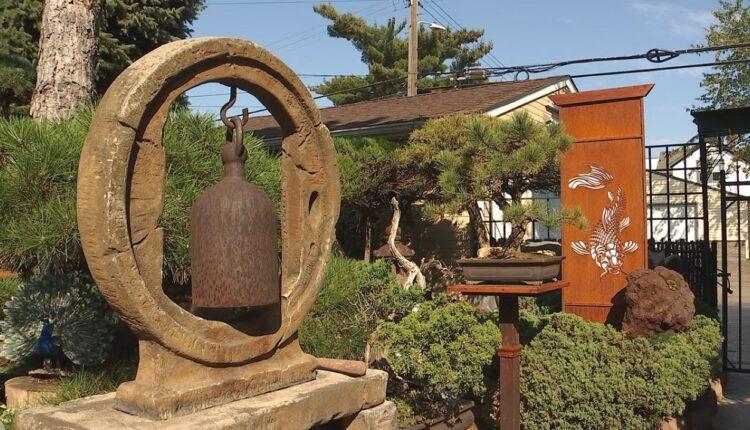 bonsai-tree-yard-mpls.jpg