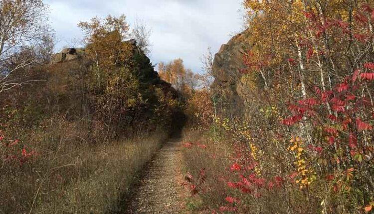 dwp-trail-2016-je.jpg